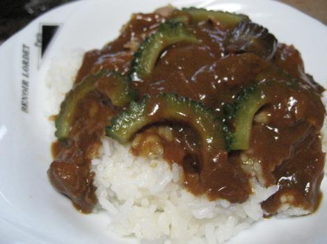 goya-curry.JPG
