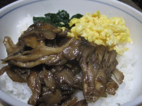 maitake-sannshokudonn.JPG